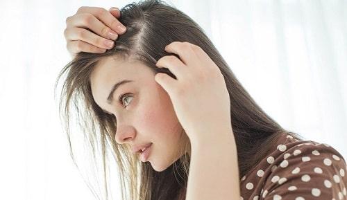 câu kỷ tử tốt cho tóc