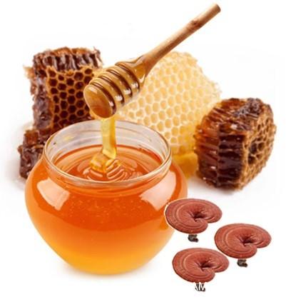Công dụng không ngờ của nấm linh chi và mật ong