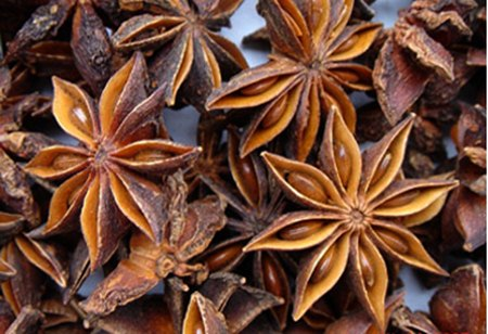 Bán hoa hồi khô ở đâu tại Hà Nội