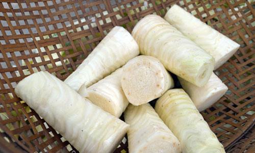 Củ hủ dừa là gì ? – Nhắc đến Bến Tre xứ sở của cây dừa