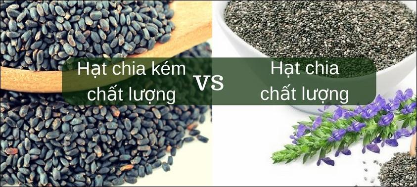 hat-chia.foodshow