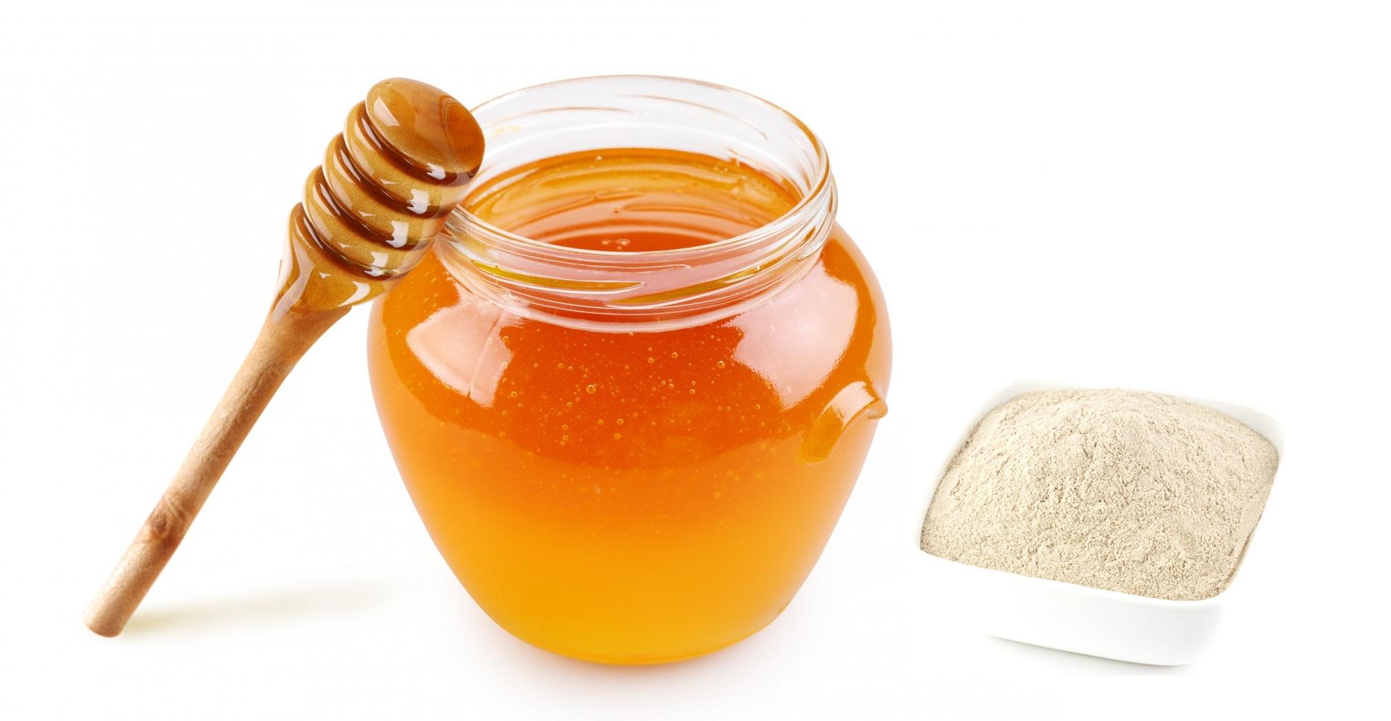 Bài thuốc quý tam thất ngâm mật ong