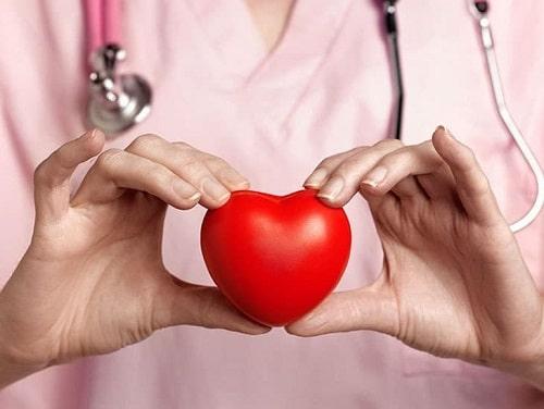 Công dụng của hạt chia đối với hệ tim mạch