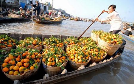 Ghe trái cây miền Tây trên chợ nổi